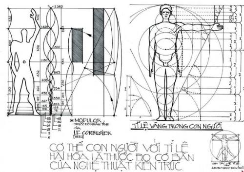Ứng dụng nhân trắc học trong thiết kế nội thất như thế nào?